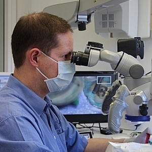 Dr. Sebus bei einer Wurzelkanalbehandlung im medi+ in Mainz